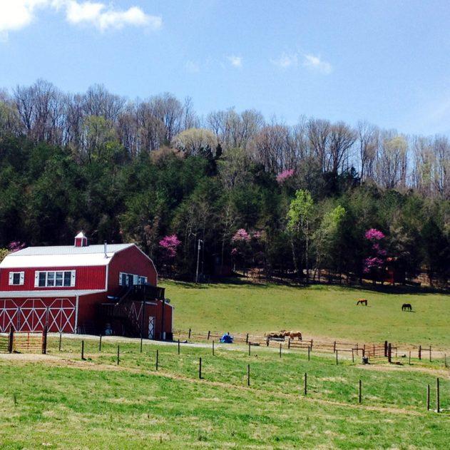 Tandy Farm Sparta, Tennessee